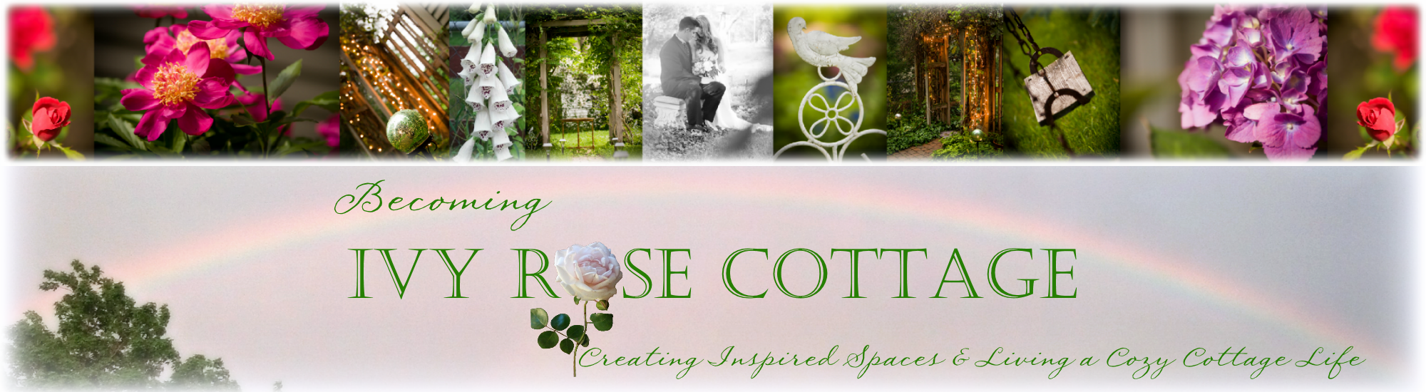 Becoming Ivy Rose Cottage